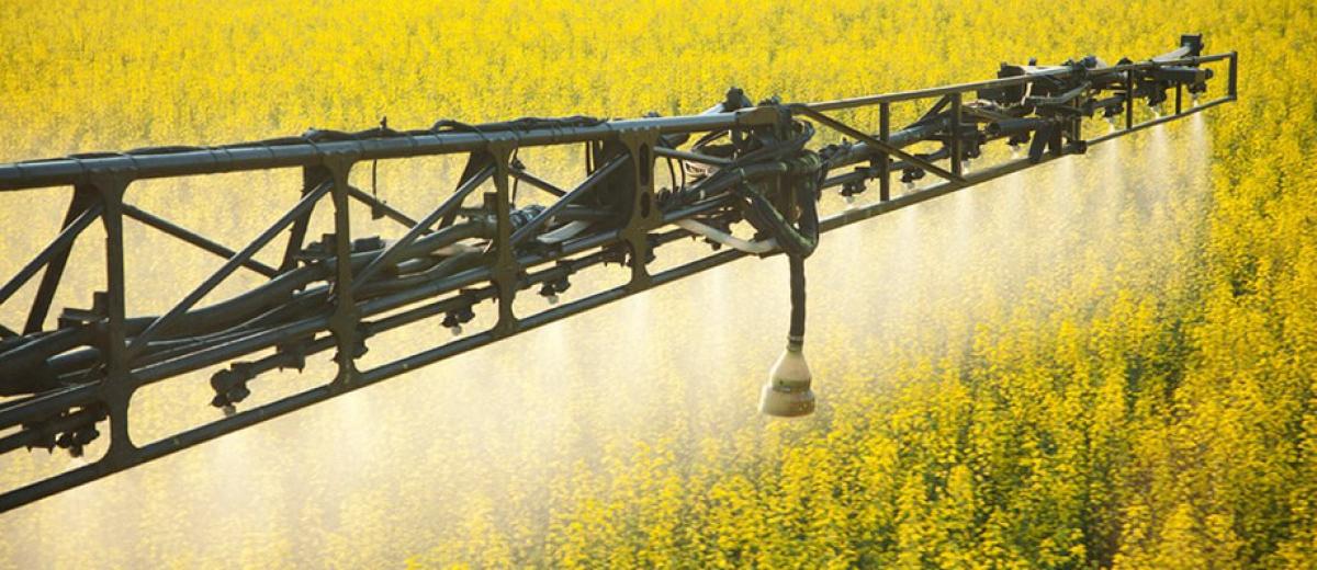 農產品公證檢驗服務